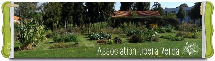 Reportage sur le jardin potager du collège Haxo